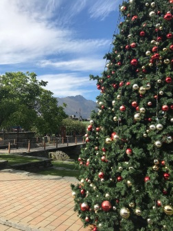 Christmas Tree, Queenstown